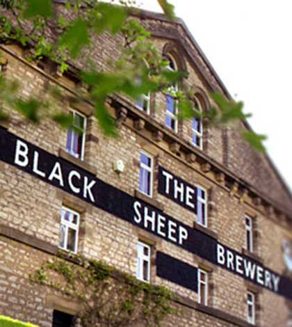 Black Sheep sponsors new music festival